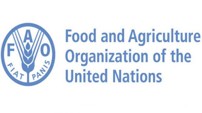 منظمة الأغذية والزراعة للأمم المتحدة توفر وظيفة شاغرة بالرياض